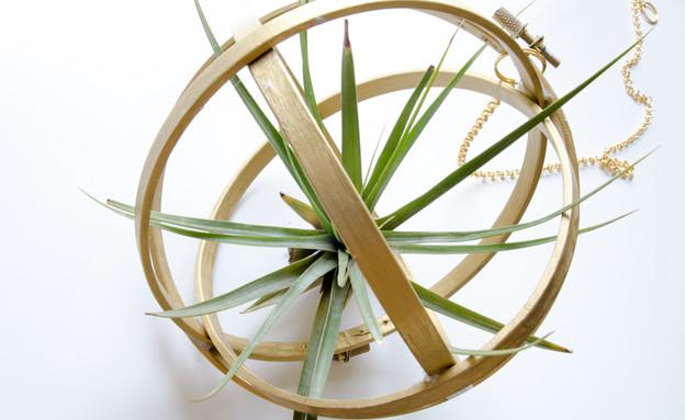 מתנות נועה, עציץ חישוק (צילום: נועה קליין)