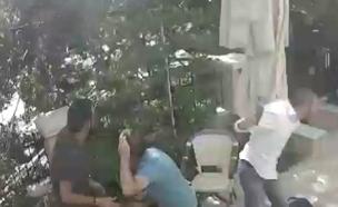 עץ נפל בכפר סבא (צילום: חדשות 2)