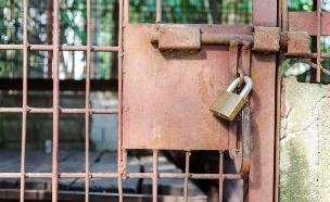 נכנס ויצא מהכלא. אילוסטרציה (צילום: Yongkiet Jitwattanatam, 123RF)