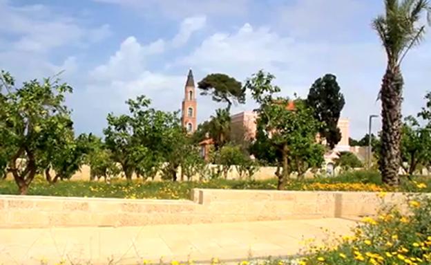 פארק החורשות בתל אביב (צילום: עמיר בלבן, החברה להגנת הטבע)