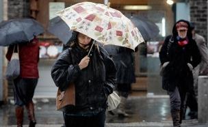 גשמים ורוחות צפויים ברחבי הארץ (צילום: פלאש 90, מרים אלשטר)