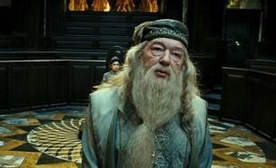 """דמבלדור ב""""הארי פוטר"""" (צילום:  יחסי ציבור )"""