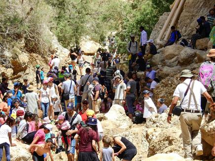 עשרות אלפי ישראלים מבלים בטבע