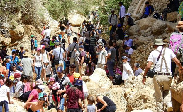 עשרות אלפי ישראלים מבלים בטבע (צילום: רשות הטבע והגנים)
