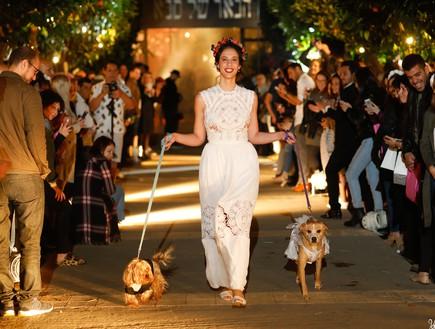 חתונות19, הדוג-מנית תאפשר לכלב שלכם ללוות אתכם בערב הארוע