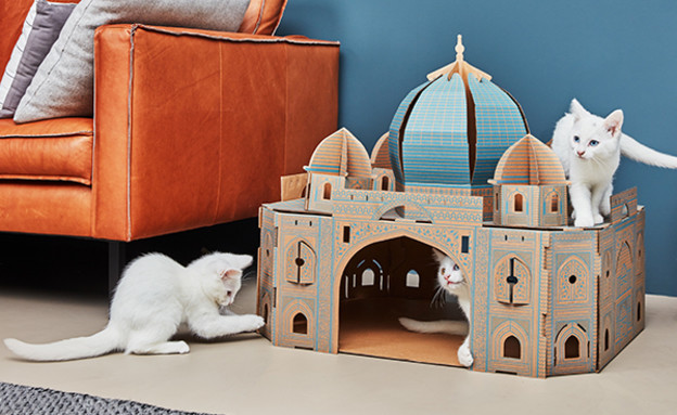 חמישייה 9.5, בית מוניומנט לחתולים (צילום: יחסי ציבור)