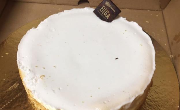 עוגת גבינה, ביגה (צילום: אסף לוי,  יחסי ציבור )