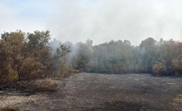 קיים עדיין קושי בטיפול בשריפות בבריכות ע (צילום: צילום: המשרד להגנת הסביבה)