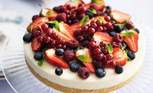 עוגת גבינה עם פירות יער (צילום: יחסי ציבור,  יחסי ציבור )
