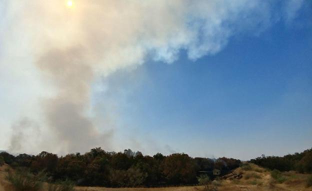 השריפה באזור אשדוד (צילום: צילום: המשרד להגנת הסביבה)