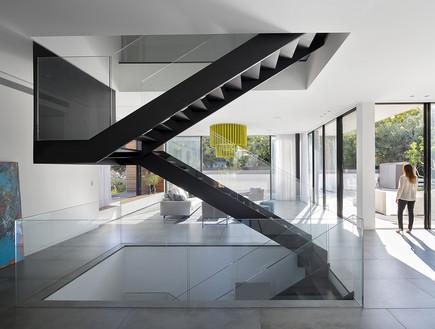 שחר רוזנפלד, מדרגות (8)