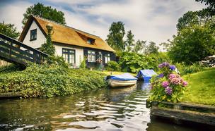 חיטהורן  (צילום: Shutterstock)