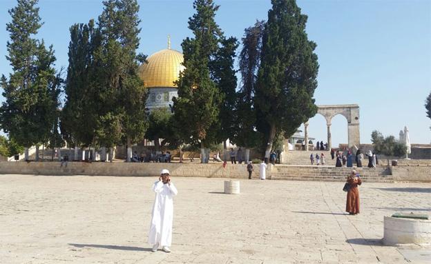 """הר הבית. """"יישאר לעד בריבונות ישראל"""" (צילום: עמית ולדמן)"""