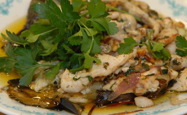 סיניה חזה עוף עם חציל וטחינה (צילום: טופ ליין תקשורת, המרכיב העיקרי)