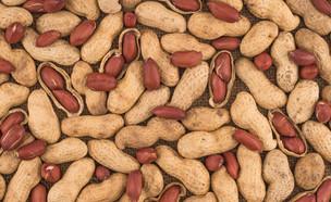 בוטנים (צילום: Golbay, Shutterstock)