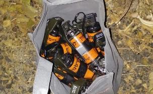 """סחר באמל""""ח וירצה מאסר (צילום: משטרה)"""