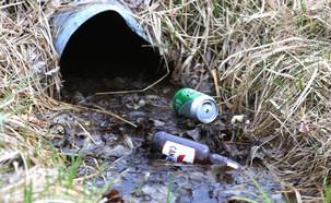 אלכוהול  (צילום: Colin McConnell, GettyImages IL)