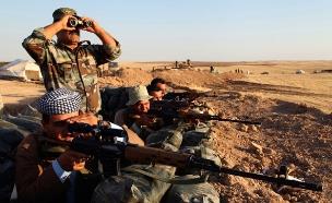 """צבא עירק מתקרב להבסת דאע""""ש (צילום: רויטרס)"""