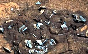 עצמות של חייזר על מאדים (צילום: יחסי ציבור)