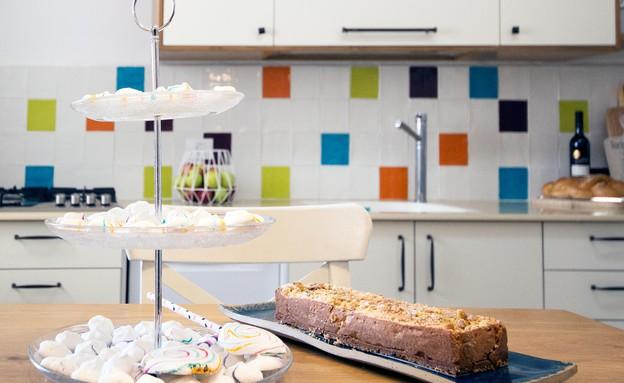10_במטבח הוחלפו חיפוי הקיר ויחידת הארונות העליונה (צילום: יחסי ציבור)