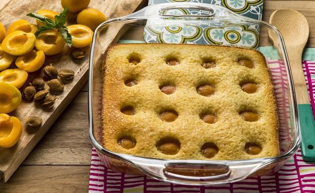 עוגת משמשים (צילום: אפיק גבאי, אוכל טוב)