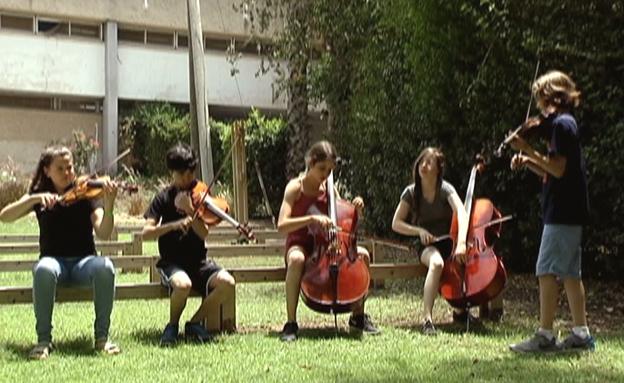 מוזיקה קלאסית במקום בילוי בבריכה (צילום: חדשות 2)