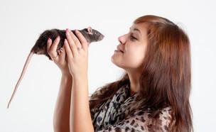 חולדה (צילום: Maslov Dmitry, Shutterstock)