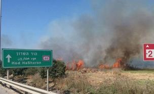 השריפה בכביש 40, היום (צילום: דוברות המשטרה)