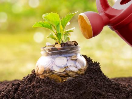 משקה כסף (אילוסטרציה: Cherries, Shutterstock)