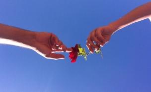 """אלפים טסים להתחתן בחו""""ל (צילום: ערן בריינר)"""