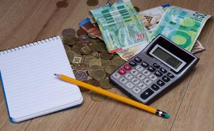 שטרות ומטבעות של שקלים ליד מחשבון, פנקס ועיפרון (אילוסטרציה: Pavel Litvinsky, Shutterstock)