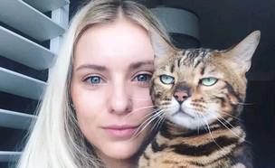 חתולים ממורמרים (צילום: boredpanda, מעריב לנוער)