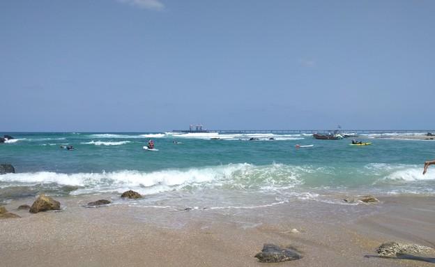 שמורת חוף גדור אולגה (צילום: נגה משל)