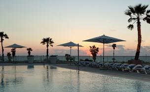 הבריכה במלון (צילום: יחסי ציבור)