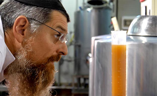 מהשדה לבקבוק: כך מייצרים בירה. צפו (צילום: חדשות 2)