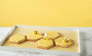 עוגיות מייפל ואגוזים (צילום: פטי גאטו, אוכל טוב)