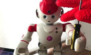פורצים לרובוט והופכים אותו לרצחני (צילום: IOActive)