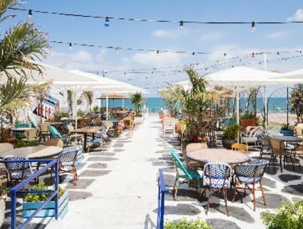 מסעדות07, כיסאות צבעוניים וצמחייה מרעננת