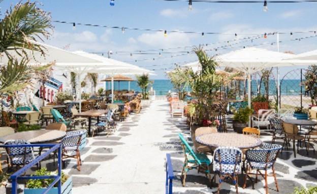 מסעדות07, כיסאות צבעוניים וצמחייה מרעננת (צילום: אביעד בר נס)