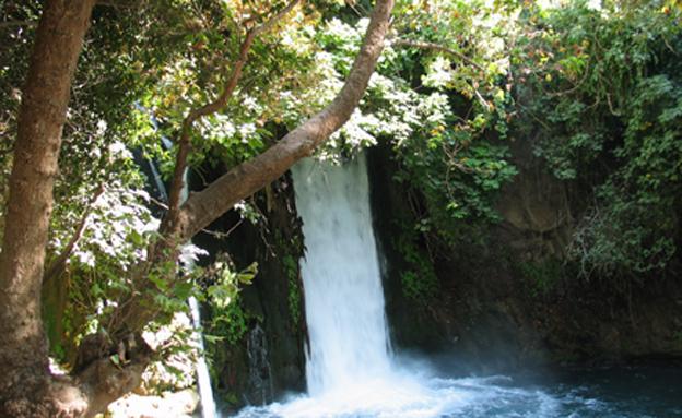 מפל הבניאס (צילום: דורון ניסים, ארכיון רשות הטבע והגנים)