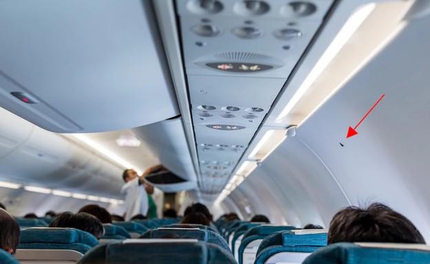 משולש במטוס (צילום: leungchopan, Shutterstock)