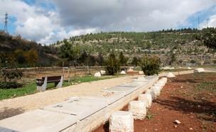 עמק הארזים (צילום: יחסי ציבור)
