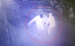 צפו: גנבים בלילה (צילום: באדיבות השומר החדש)