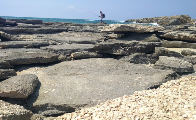 חוף נחשולים (צילום: נגה משל)