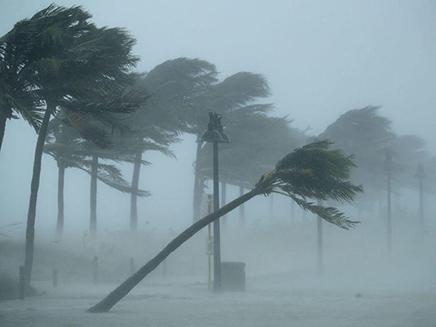 הוריקן אירמה פלורידה