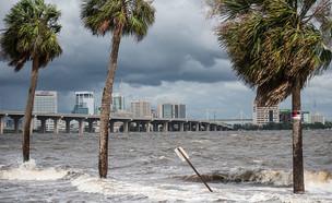 הוריקן אירמה (צילום: יחסי ציבור)