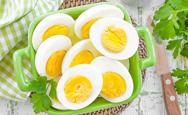 ביצים קשות (צילום:  Sea Wave, ShutterStock)