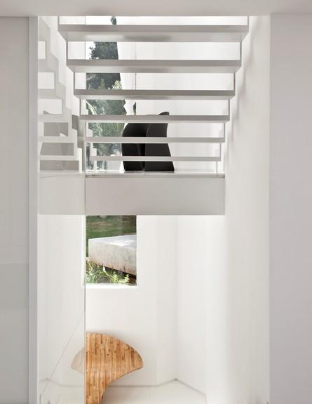 טל תמיר,  מדרגות גובה (3) (צילום: עודד סמדר)