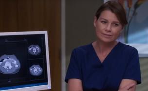 """האנטומיה של גריי מרדית 14 (צילום: יח""""צ באדיבות yes)"""