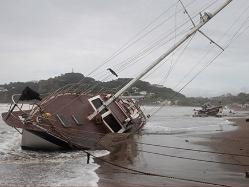 חופי ניקראגווה אחרי הוריקן נייט (צילום: חדשות 2)